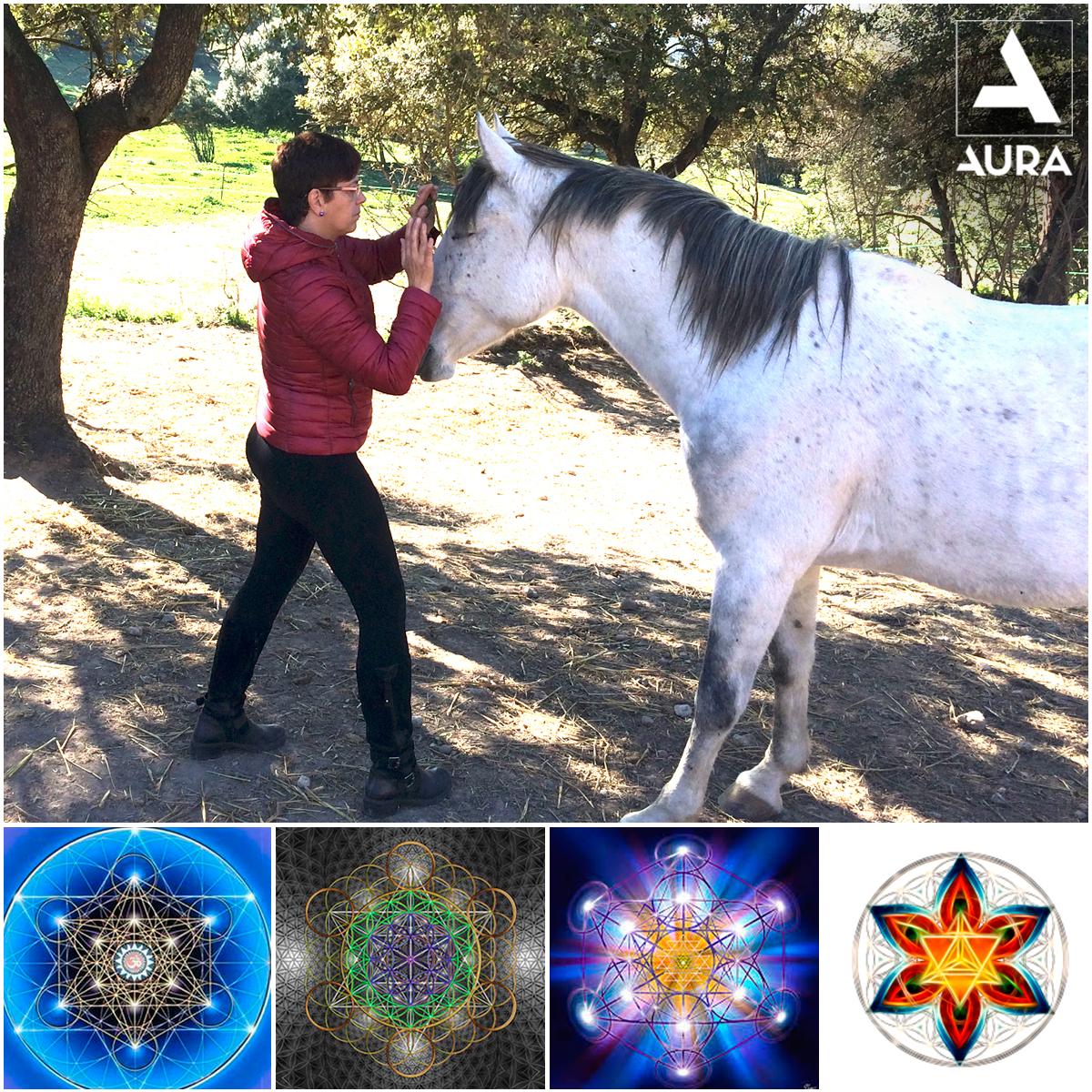 Lee más sobre el artículo Terapia energética a través de la Geometría Sagrada