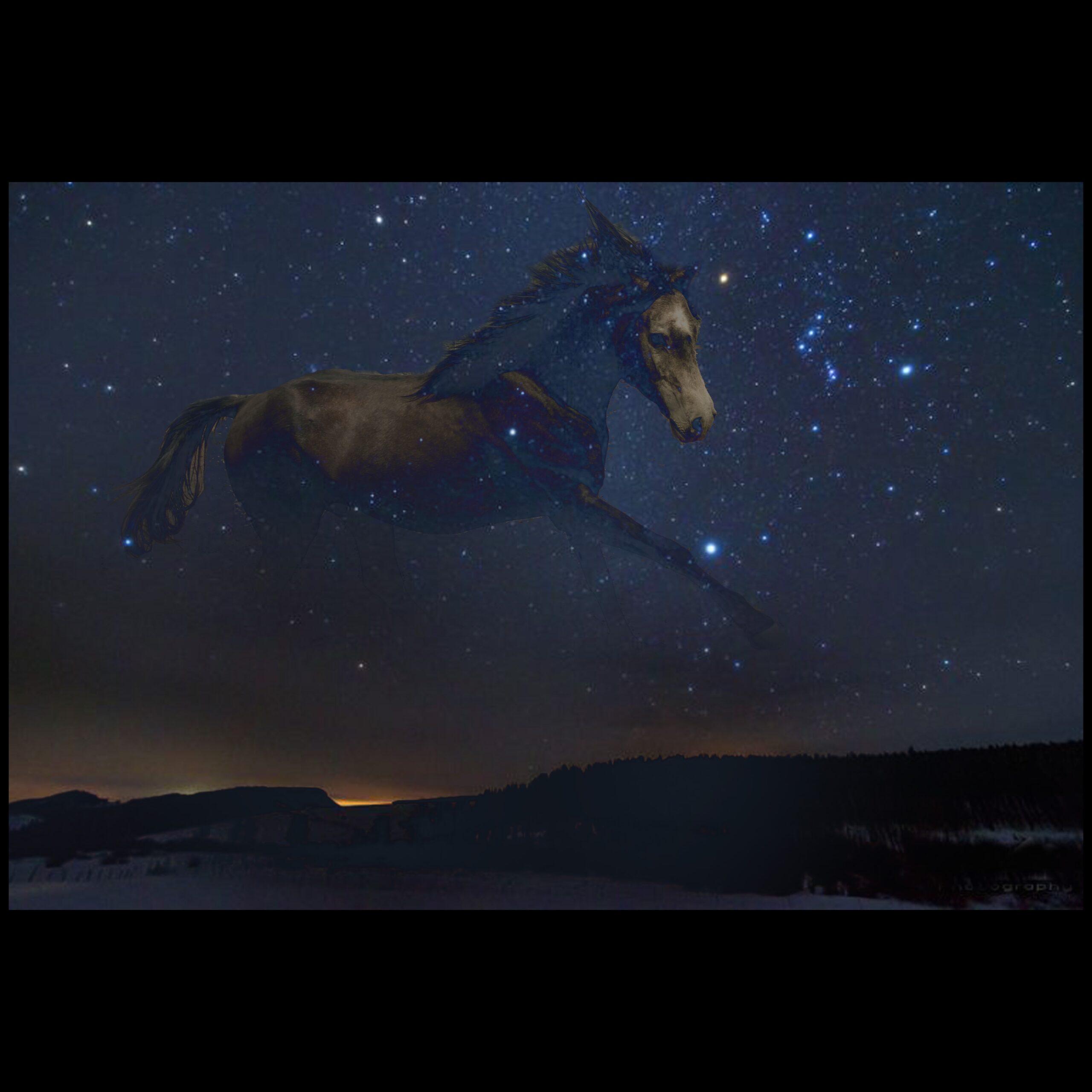Lee más sobre el artículo Cronos: Mi caballo alado